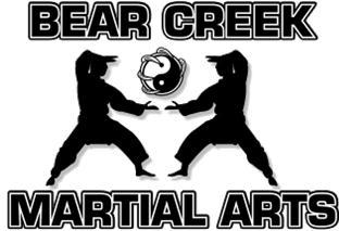 bc_martialarts1 2